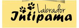 INTIPAMA Logo
